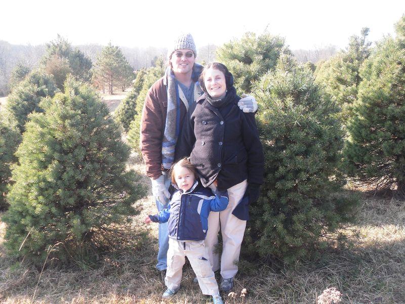 December tree 009